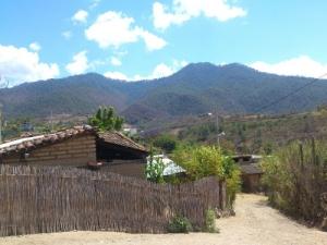 quiechapa8